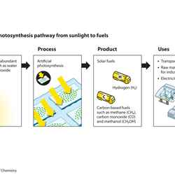 Photosynthesis: solar fuels