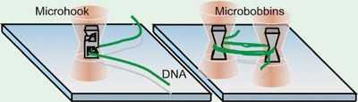 Using miniaturised hooks and bobbins single DNA strands can be manoeuvred without breakage