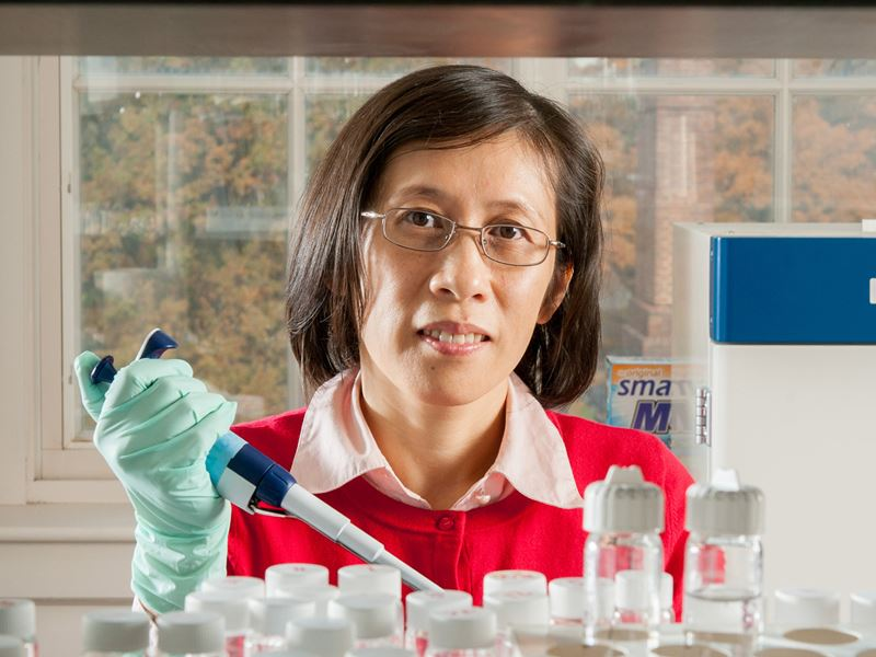 Qin Wang - an Asian woman with shoulder length hair and glasses - looks into the camera wearing plastic gloves and holding a pipette.