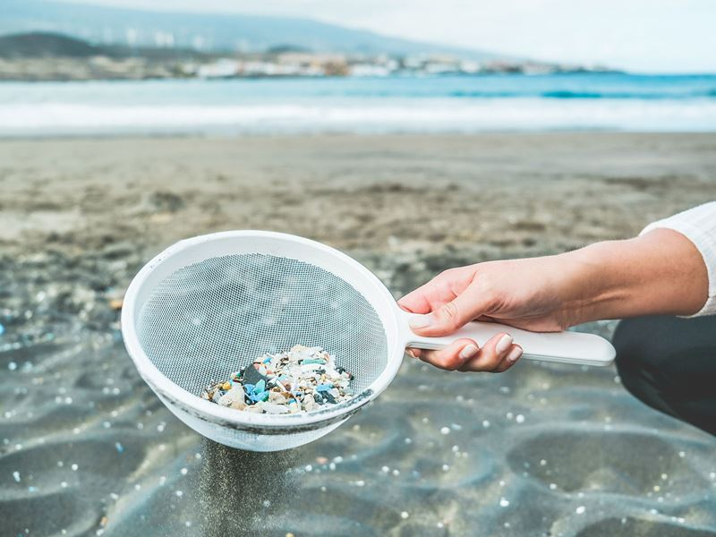 A hand is holding a sieve containing small piece of plastic, in front of a beach.