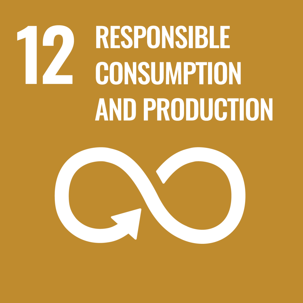 SDG 12 - responsible consumption and production.png