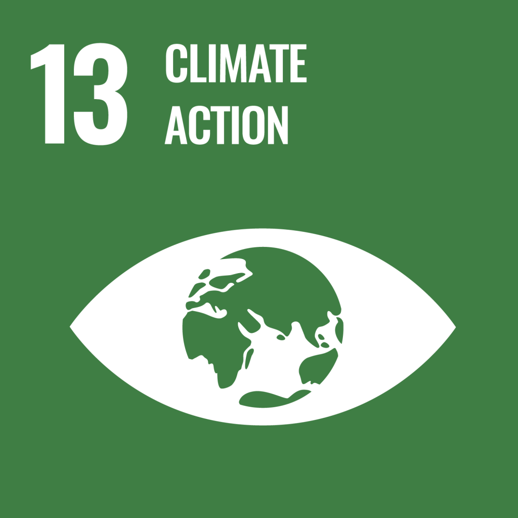 SDG 13 - climate action.png